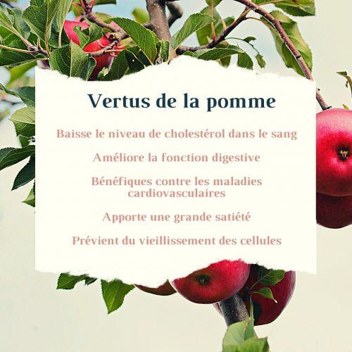 vertus de la pomme